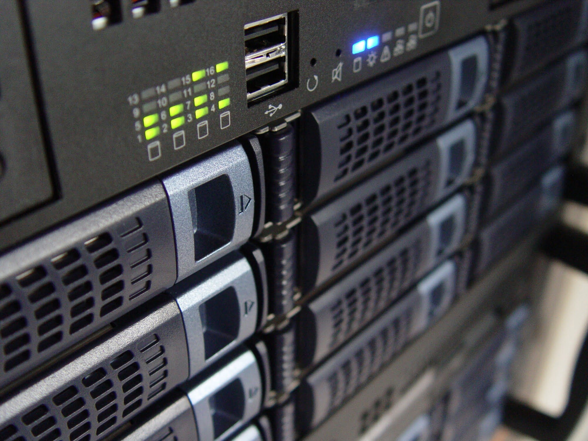 Dedicated Server Host 101: Keeping Your Website Reliable and Secure